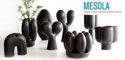 Mesola Collection